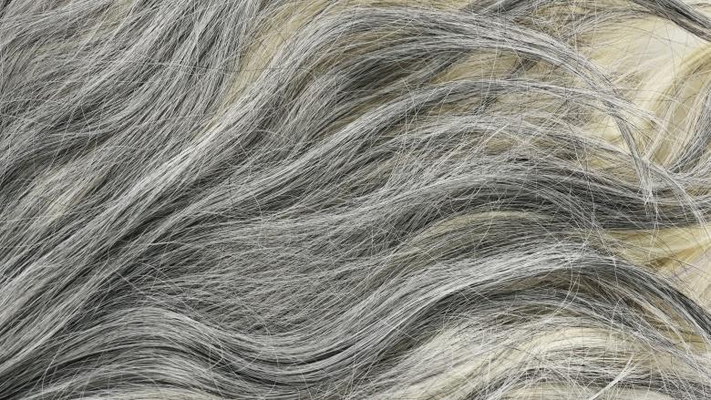 Pourquoi les cheveux deviennent gris ?