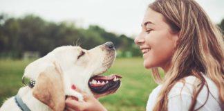 Collaborer avec des chiens pour détecter le cancer du sein